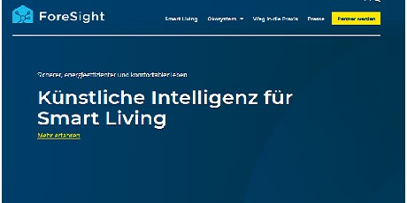 Projekt-Webseite für ForeSight online